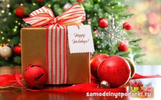 Как подарить ребенку подарок на новый год. Подарки на новый год — что подарить родственникам, друзьям, коллегам и детям