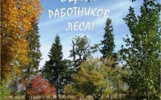 Всемирный день леса. Поздравления ко дню работников леса в стихах и в прозе. Поздравления в стихах
